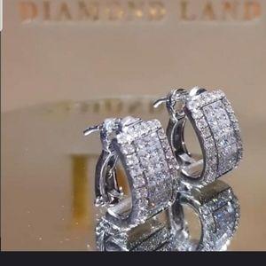 Jewelry - Beautiful rhinestone silver earrings